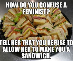 confuse a feminist funny picture
