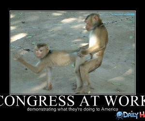 Congress at Work funny picture