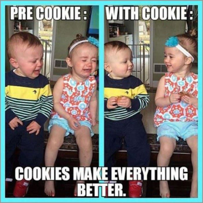 cookies make everything better funny picture