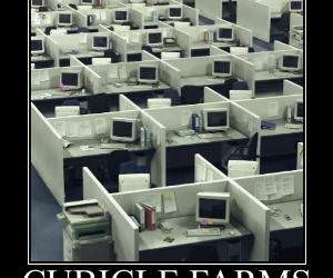 Cubicle Farms funny picture