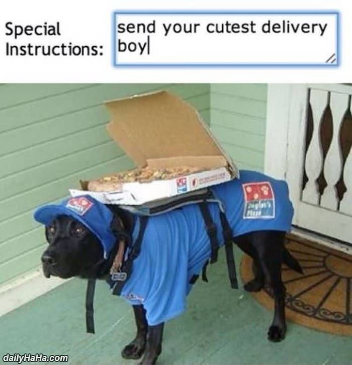 cutest delivery boy funny picture
