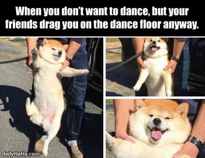 dancing anyways funny picture