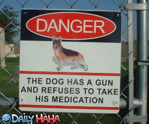 Dog with a Gun Picture