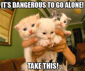 dangerous-to-go-alone funny picture