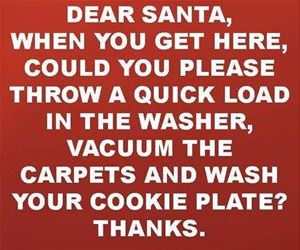 dear santa what i really want funny picture