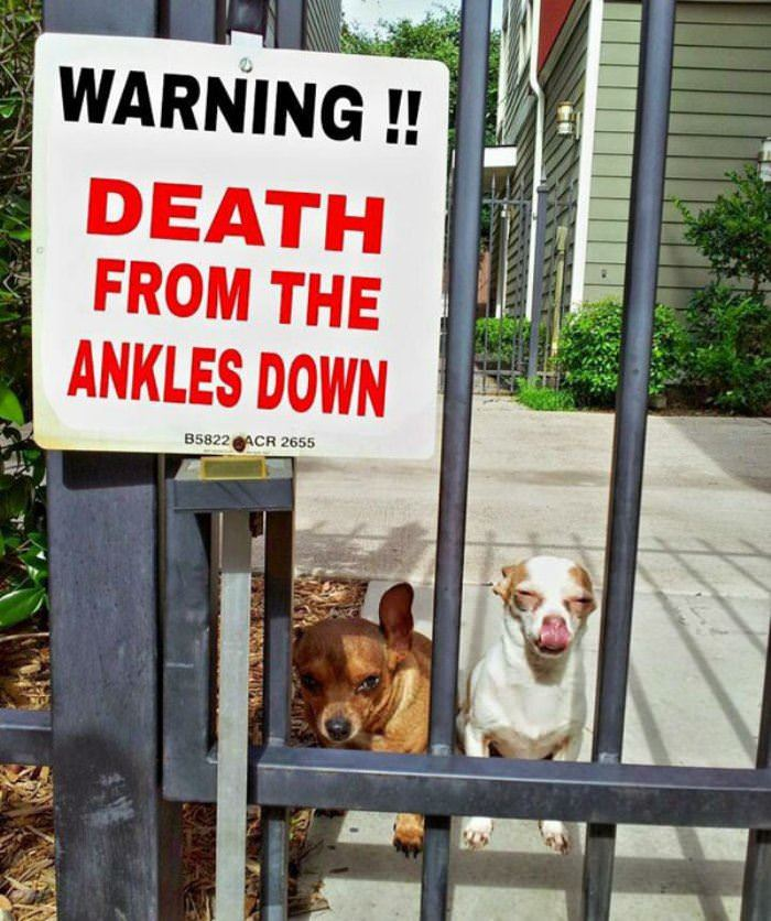 death from ankles down funny picture