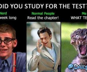Did You Study funny picture