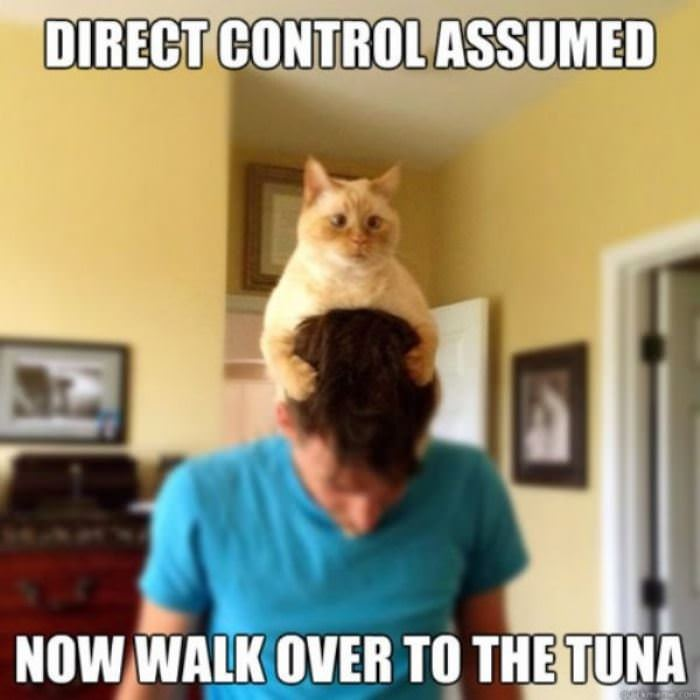 direct control assumed funny picture