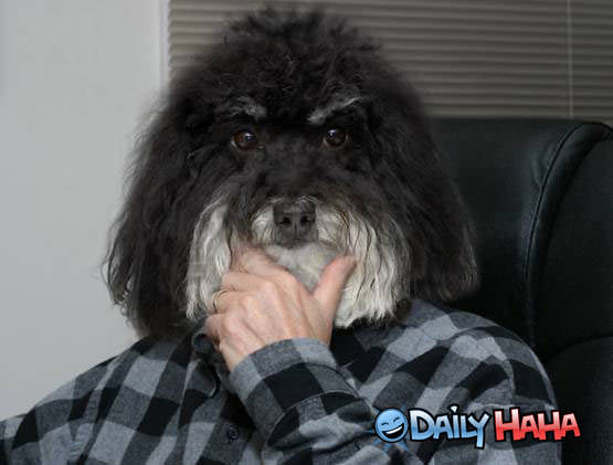 Dogfaceman