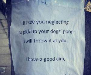 dog poops funny picture