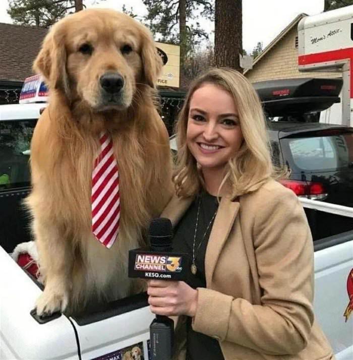 doing an interview