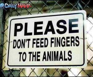Dont feed fingers