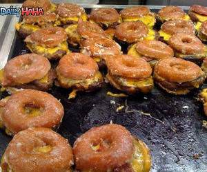 Donut Burgers Funny Picture