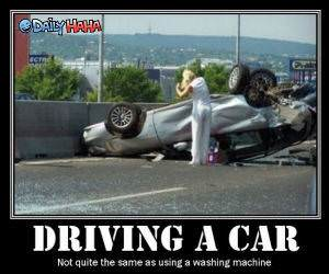 Driving a Car Funny Picture