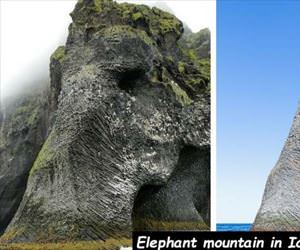elephant mountain