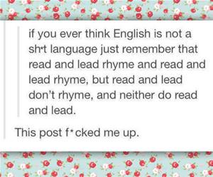 english funny picture