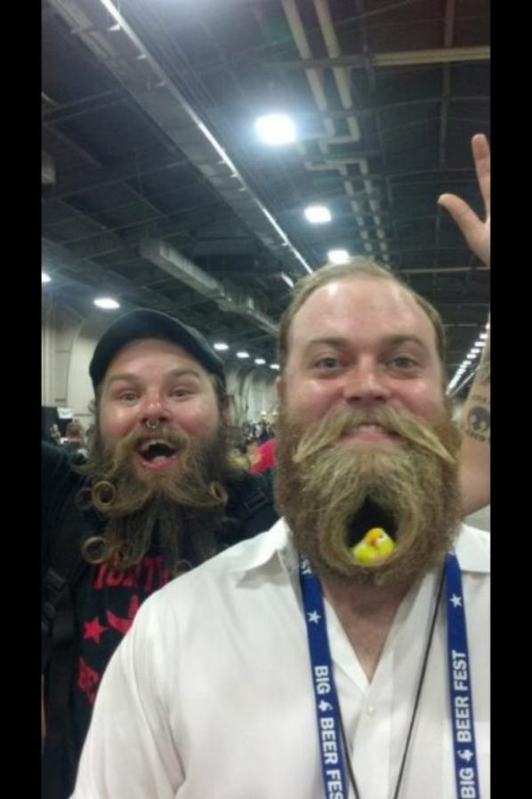 Beard Nest funny picture