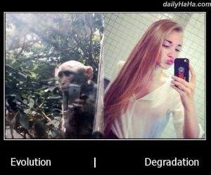 evolution funny picture