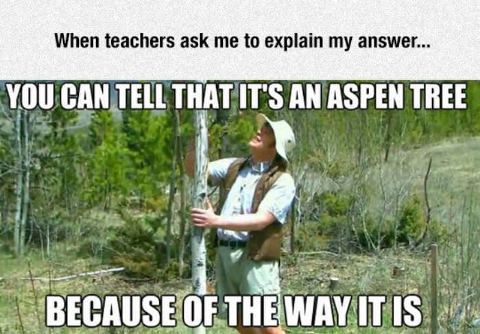 explain your answer funny picture