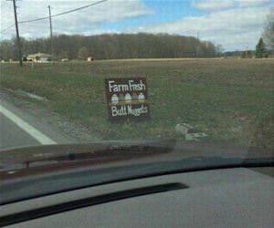 farm fresh nuggets funny picture