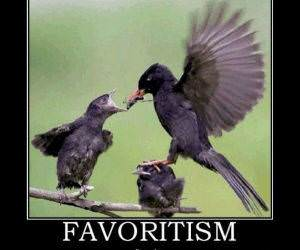 Favoritism funny picture