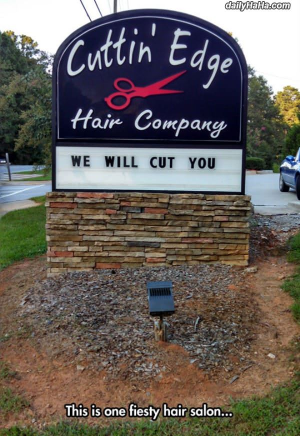 fiesty hair salon funny picture