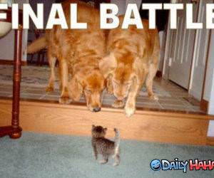 Final Battle funny picture