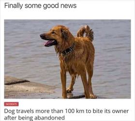 finally some good news