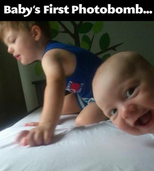 Babys First Photobomb funny picture