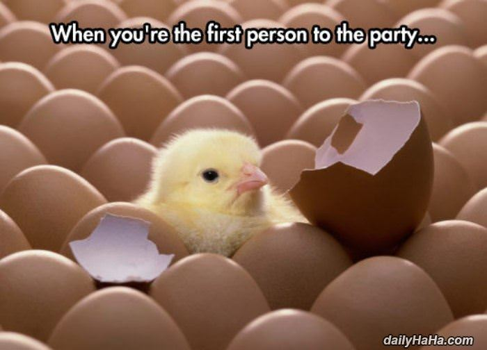 first person to the party funny picture