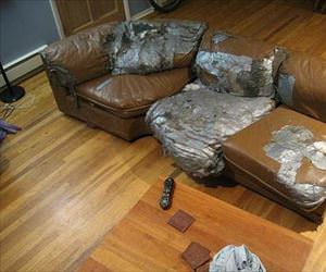 fixed the couch