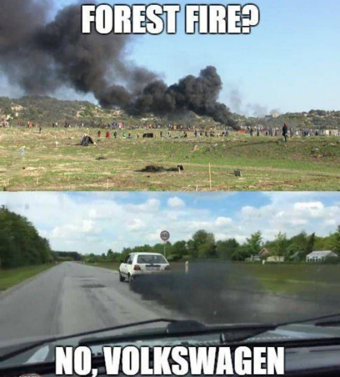forest fire nope funny picture