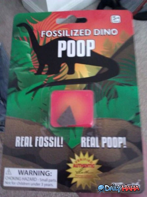 Fossilized Poop funny picture