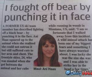 Bear Fight funny picture