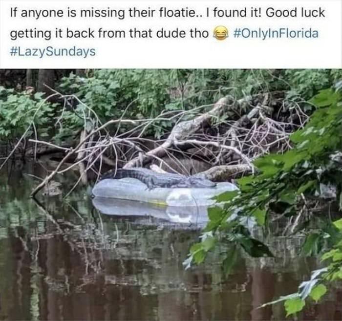 found your floatie
