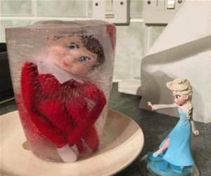frozen elf funny picture