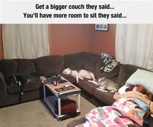 get a bigger couch they said funny picture
