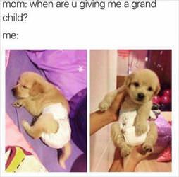 give me a grand child