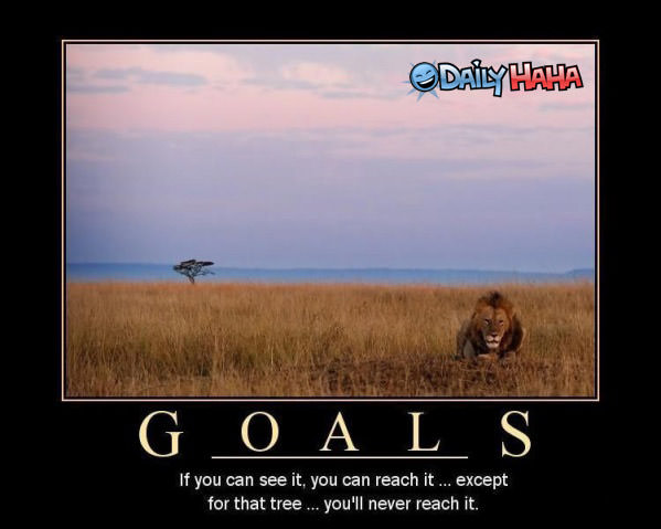 Goals funny picture