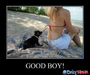 Good Boy funny picture