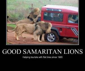 Good Samaritans funny picture