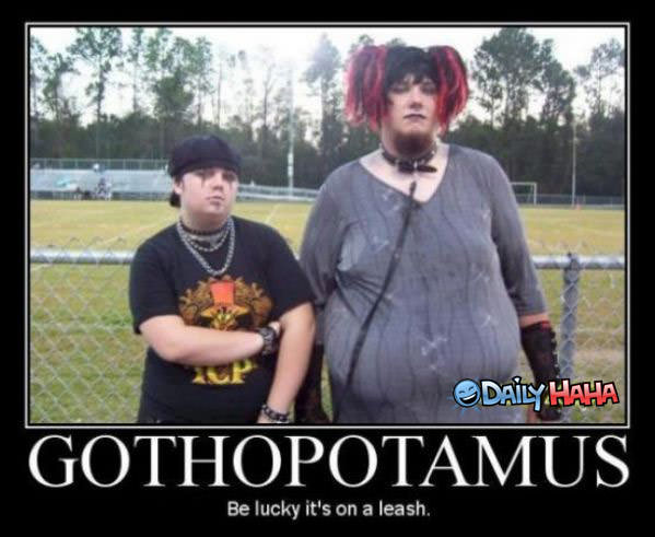 Gothopotamus Funny Picture