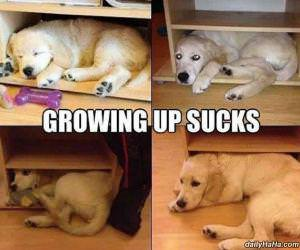 growing up sucks funny picture
