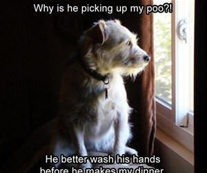 he better wash his hands funny picture