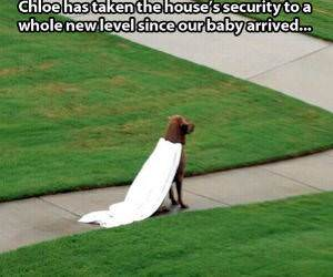 New Home Security funny picture