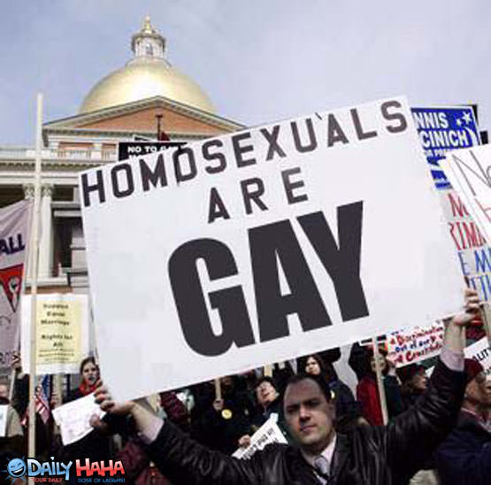 homosexuals_are_gay.jpg