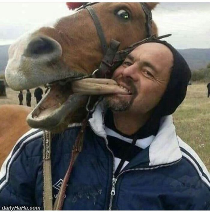 horsing around funny picture