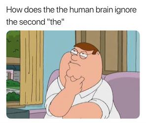 how does the the human brain do it