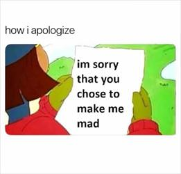 how i choose to apologize