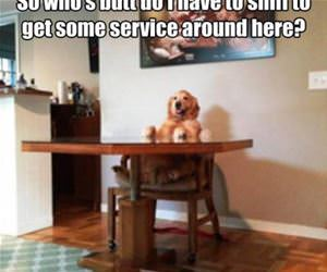 how do i get service funny picture